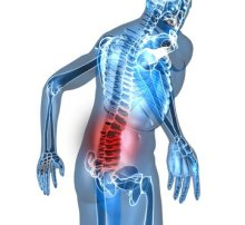 Lower spine graphic